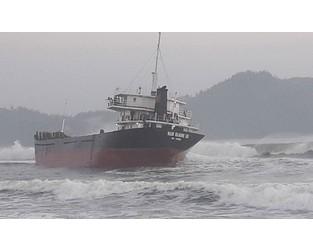 Cargo ship hits reefs, intentionally grounded, Vietnam - FleetMon