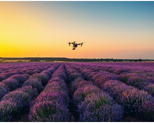 Willis Towers Watson launches drone disruption action plan
