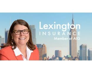 AIG's Lexington names Chmieleski head of professional lines