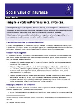 Social value of insurance