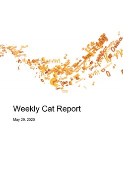 Weekly Cat Report - May 29, 2020
