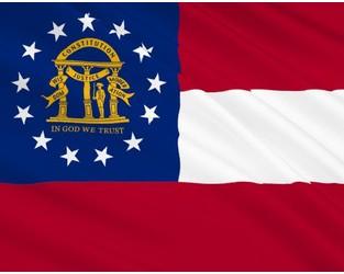 Georgia Legislature Authorizes Cell Captive Formation - Captive.com
