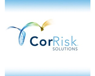 Christine DeFelice, A & E Professional Liability Leader, Joins CorRisk Solutions