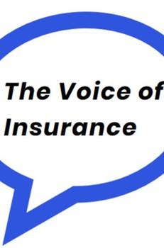 Podcast: Ep.6 The Capsicum-Gallagher deal with Rupert Swallow and Simon Matson - The Voice of Insurance