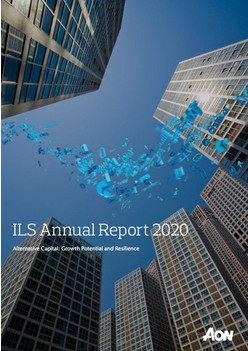 ILS Annual Report 2020