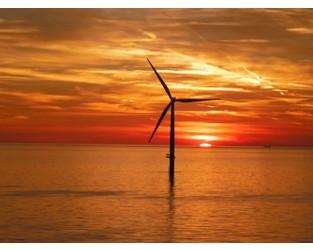 New York Offshore Wind Alliance Adds Workforce-Dedicated Partners - Offshorewind.biz