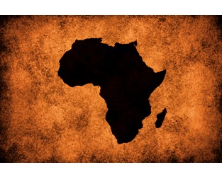 New opportunities ahead for Africa as the new world order takes shape