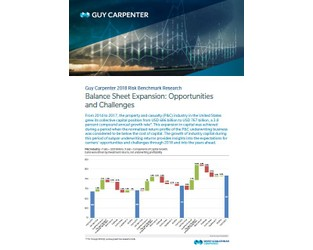 Balance Sheet Expansion: Opportunities And Challenges