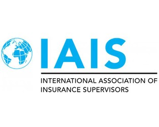 IAIS sets out objectives in its Roadmap for 2021-2022