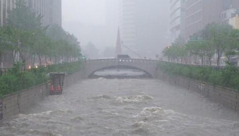 South Korea's P&C players hit by US$40m rain losses - Insurance Asia News