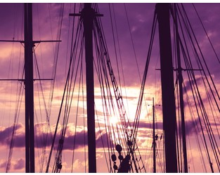 Willis Towers Watson launches customised cyber cover for shipowners