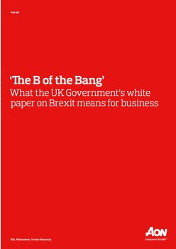 'The B of the Bang'