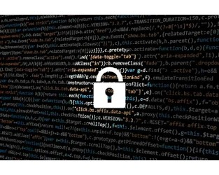 Re/insurers to partner with governments & capital markets on cyber risk: S&P