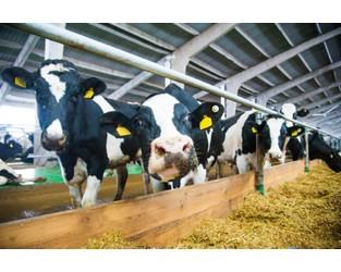 New Crop Insurance Program May Benefit Wisconsin Dairy Farmers