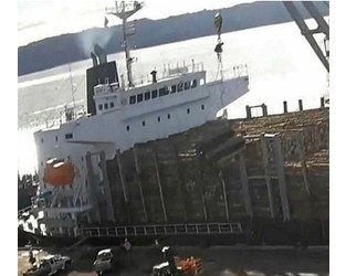 Stevedore fined $158,000 after excavator dropped from ship's crane - TradeWinds