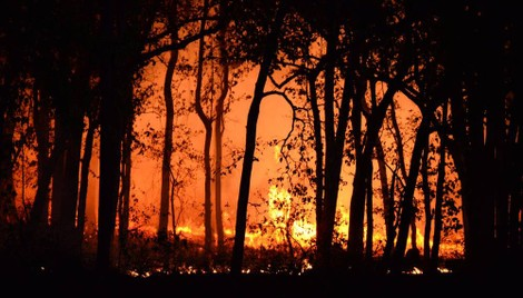 Underwriting Wildfire Takes Extra Care