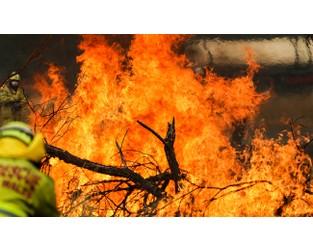 Bushfires set to impact aggregate and QS reinsurers