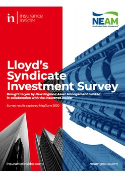 Lloyd's Syndicate Investment Survey