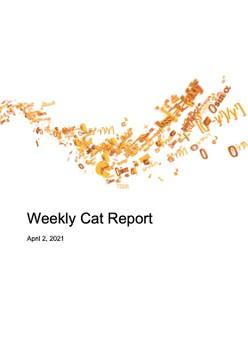 Weekly Cat Report - April 2, 2021