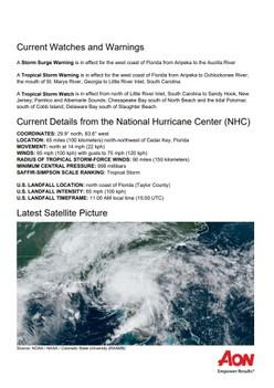 Cat Alert: Tropical Storm Elsa
