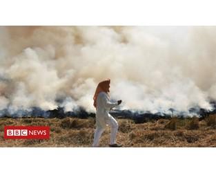 Coronavirus: 'India must cut pollution to avoid Covid disaster' - BBC