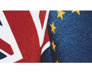 Brexit should have minimal impact on insurance buyers says Airmic - Commercial Risk