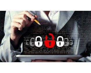 India: Cyber insurance sees 40% growth in risk-riddled market
