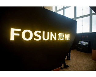 China's Fosun Considers Sale of German Insurer Frankfurter Leben: Sources