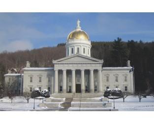VCIA's president criticises Washington's captive law