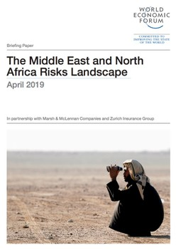 The Middle East and North Africa Risks Landscape