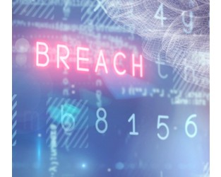 Liberty's Cyber cell underpins sustainable underwriting