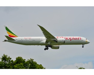 15 Families of Victims of Ethiopian Airlines Crash Reject Boeing's Cash Offer