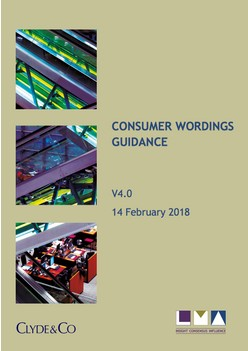 Consumer Wordings Guidance