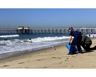 Coast Guard had earlier notice about California oil spill - AP