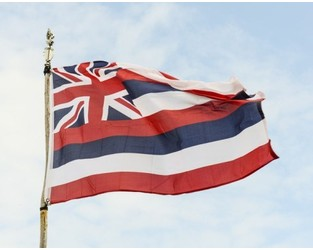 Hawaii Adds to Captive Total, Licensing 21 New Captive Insurers in 2020 - Captive.com