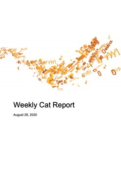 Weekly Cat Report - August 28, 2020