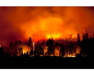 California Wildfire Fund: Protecting our Planet and the Public Purse