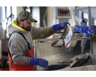 Pandemic has taken a bite out of seafood trade, consumption - AP