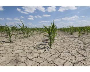 Drought in Plains a concern for U.S. corn and soy crops - Agriculture.com