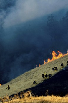 Wildfire acreage way down in California this year _ so far - AP
