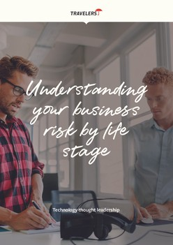 Understanding your business risk by life stage