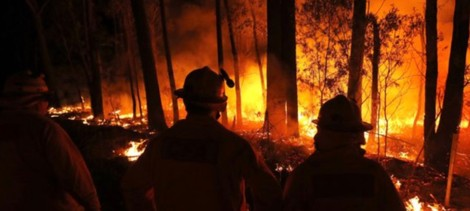 Australian Insurers Strong Enough to Handle Recent Bushfire Losses: A.M. Best