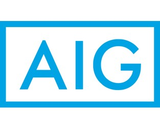 AIG says typhoon Hagibis claims count lower than expected (so far)