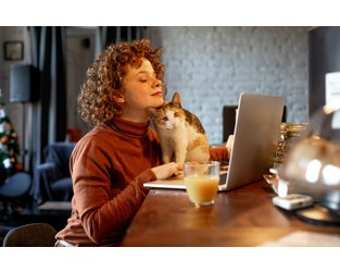 Working from home putting pressure on commercial property market