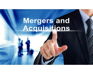 Chubb Arabia explores merger with Saudi insurer - Business Insurance