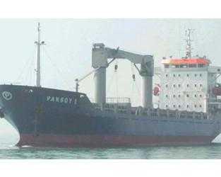Ten Turkish crew released after a month's captivity in Nigeria - Splash 24/7
