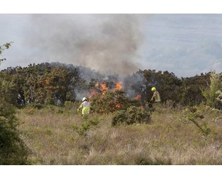Firefighters battle gorse blaze after Orange wildfire warning - Independent.ie