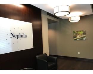 Nephila narrows insurance loss but reinsurance hit in 2018