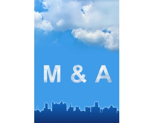 P/C Insurers Expect Smaller M&As to Continue in 2020
