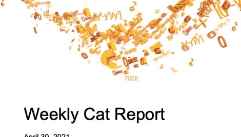Weekly Cat Report - April 30, 2021